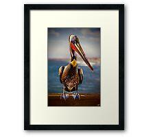 Plump Peter Pelican's Pier Photo Pose Framed Print