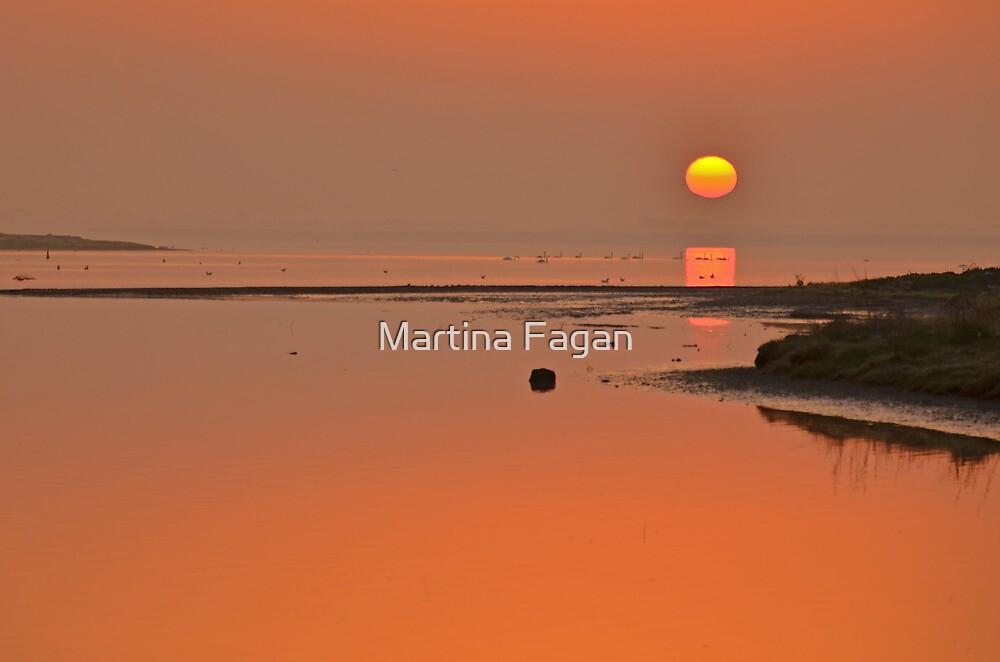 March Estuary Sunrise by Martina Fagan