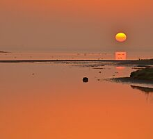 March Estuary Sunrise by Martina Fagan