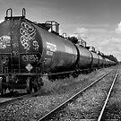 Graffiti Train by Paul Politis