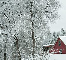 Red house in the winter by Junec