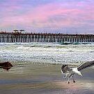 Oceanside by Chris Lord