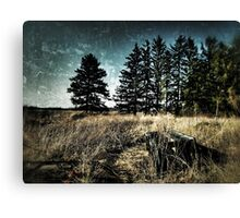 Off the Path Canvas Print
