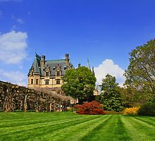 Biltmore House - Ashville, N.C. by photosan