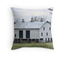 Barn Near Stephens City Throw Pillow