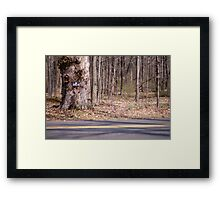 No Hunting Framed Print