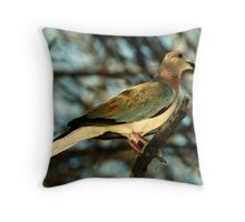 Laughing Dove Throw Pillow