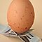 *EGGS* Challenge for *Food for Thought*