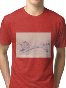 Christmas_Cat Tri-blend T-Shirt