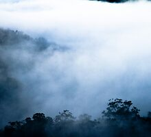 Valley Fog by Greg Rollo