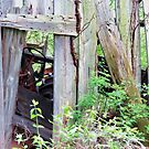 Old Case Tractor in an Even Older Barn by Ron Russell