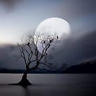 Lone Tree by damienlee