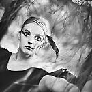 Blackbird IV by Trish Woodford