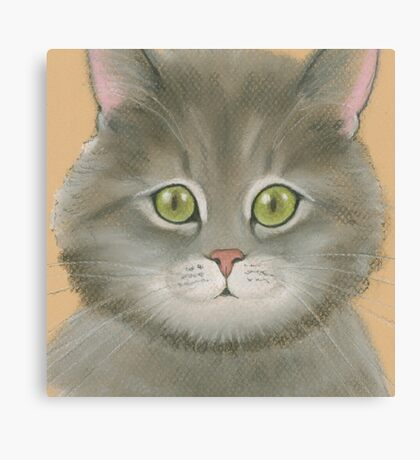 Gray kitten. Canvas Print