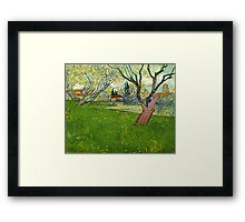 Vincent Van Gogh - Flowering Orchards with a view of Arles Framed Print