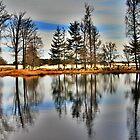 Reflection in Spring by Jo Nijenhuis