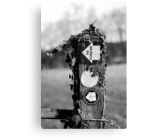 The Itchen Way Canvas Print