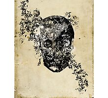 skull crystallisation Photographic Print