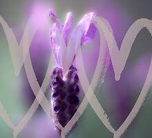 Love Lavender by Karen Lewis