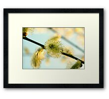 Day 260 - 26th March 2012 Framed Print