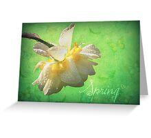 Spring♥ Greeting Card