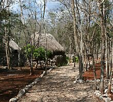 Xtabay Kaan, Yucatan, Mexico  by Allen Lucas