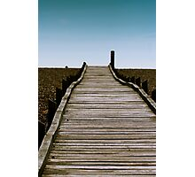 Dungeness Walkway Photographic Print