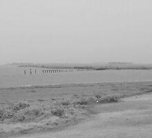 Rainy Day Feeling by Lozzar Landscape