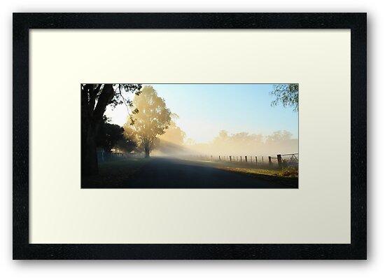 """""""Misty Morning"""" by jonxiv"""