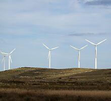 Wind Farm by Matti Harrod