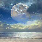 Sky Blue by ladygarbanzo