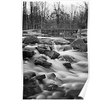 Holley Falls in B&W Poster