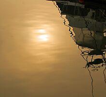 Morning Excursion  by John  Kapusta