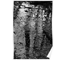 Wetland Reflections Poster