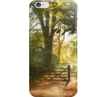""" Gateway To Autumn "" iPhone Case/Skin"