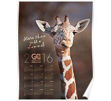 More than just a mammal Poster Calendar Poster