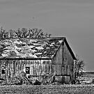 Old Wisconsin Barn  by Marcia Rubin