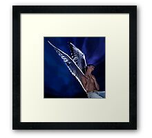 Fly, Blackbird, Fly Framed Print