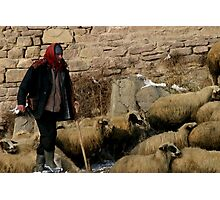 Shepherd in Sille Photographic Print