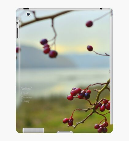 """ Elder Berry River "" iPad Case/Skin"