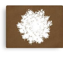 Queen Anne's Lace in Brown & White Canvas Print