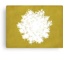 Queen Anne's Lace in Gold & White Canvas Print