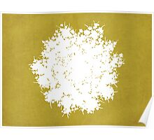 Queen Anne's Lace in Gold & White Poster