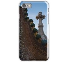 The Spine of the Dragon  iPhone Case/Skin