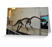 plateosaurus skeletal frame Greeting Card