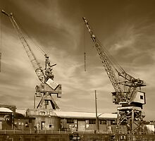 Cockatoo Dock Crane Twins by Richard  Windeyer