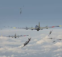 B17 - Hard Road Home by Pat Speirs