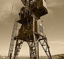 Cockatoo Dock Straddle Crane by Richard  Windeyer