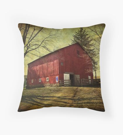 Equine Stables Throw Pillow