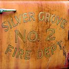 Silver Grove No. 2 by Ron Russell